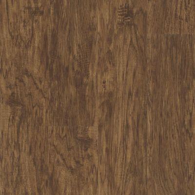 Shaw Floors Nfa HS Ventura Sienna Oak 00452_VH542