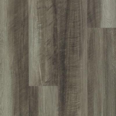 Shaw Floors Nfa HS Ventura Oyster Oak 00591_VH542