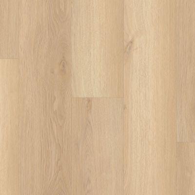 Shaw Floors Nfa HS Ventura White Sand 02013_VH542