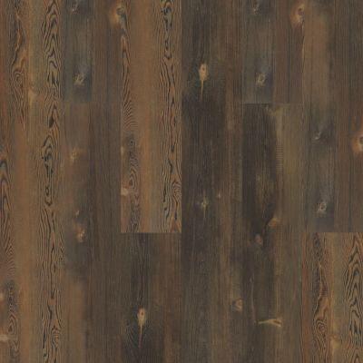 Shaw Floors Nfa HS Beaver Creek Forest Pine 00812_VH544