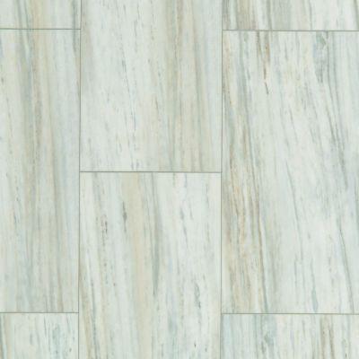 Shaw Floors Nfa HS Beaver Creek Tile Glacier 00147_VH546