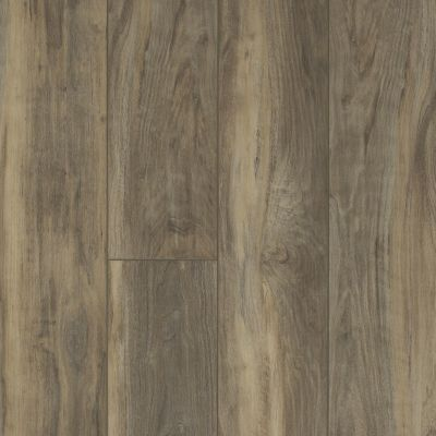 Shaw Floors Resilient Residential Mountainside HD Ardesia 00558_VH549