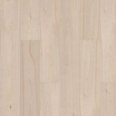 Shaw Floors Nfa HS Santa Maria Hdr Plus Ethereal 01069_VH551