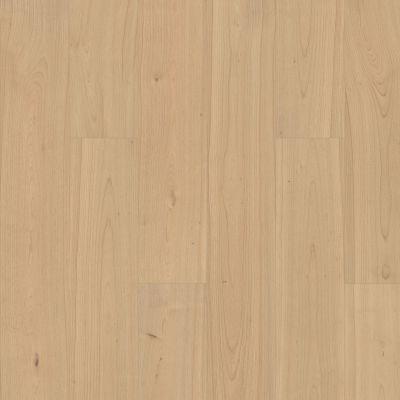 Shaw Floors Nfa HS Santa Maria Hdr Plus Hygge 02025_VH551