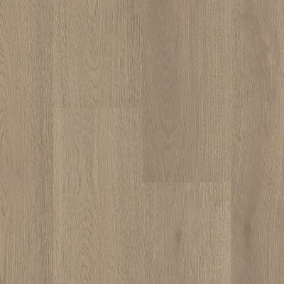 Shaw Floors Nfa HS Santa Maria Hdr Plus Lagom 05103_VH551