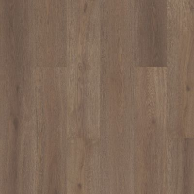 Shaw Floors Nfa HS Santa Maria Hdr Plus Glogg 07203_VH551