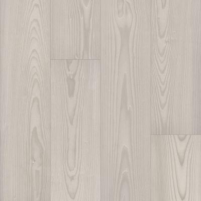 Shaw Floors Nfa HS Santa Maria Mxl + Silk 01088_VH552