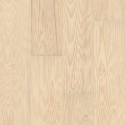 Shaw Floors Nfa HS Santa Maria Mxl + Antique 02041_VH552