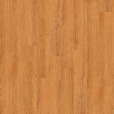 Shaw Floors Vinyl Property Solutions Modernality 12plank Metro 00624_VPS42