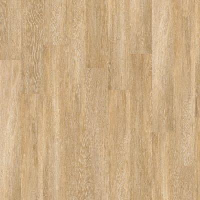Shaw Floors Vinyl Property Solutions Expo 6 Mil Paris 00343_VPS48
