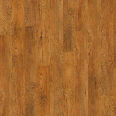 Shaw Floors Vinyl Property Solutions Silva Antique Chestnut 00230_VPS54
