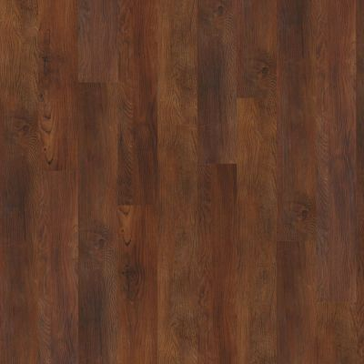 Shaw Floors Resilient Property Solutions Silva Warm Chestnut 00710_VPS54