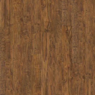 Shaw Floors Vinyl Property Solutions Easy Step Plank Flint 00234_VPS90