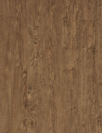 Shaw Floors Resilient Residential COREtec Plus Plank 5″ Northwoods Oak 00205_VV023