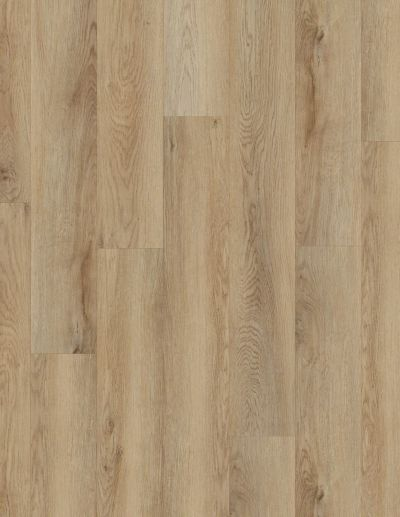 Shaw Floors Resilient Residential Galaxy Cartwheel Oak 02061_VV465
