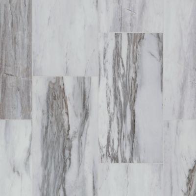 Resilient Residential COREtec Stone 12×24 Polished Sahni 12224_VV564