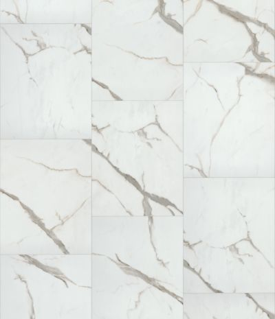 Resilient Residential COREtec Stone 18×24 Polished Olesia 18223_VV578