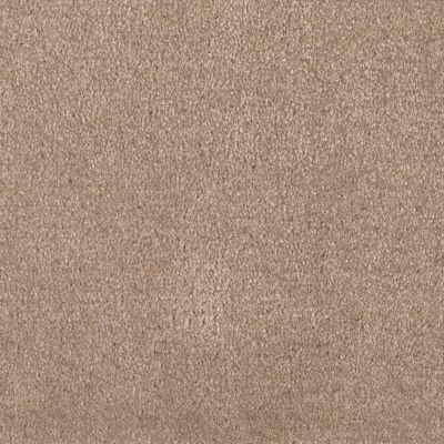 Shaw Floors Roll Special Xv124 Thornwood 00747_XV124