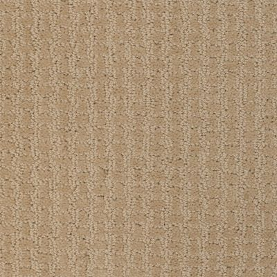 Shaw Floors Roll Special Xv284 Field Stone 00105_XV284