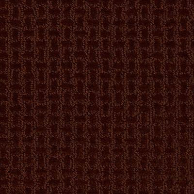 Shaw Floors Roll Special Xv284 Burnt Ember 00601_XV284