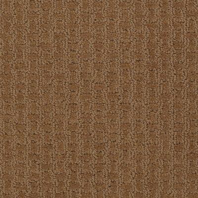 Shaw Floors Roll Special Xv284 Saddle 00702_XV284