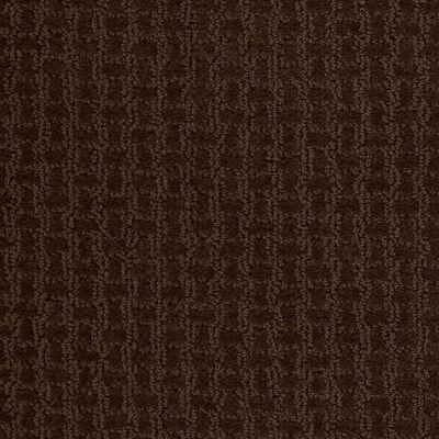 Shaw Floors Roll Special Xv284 Mocha Chip 00705_XV284
