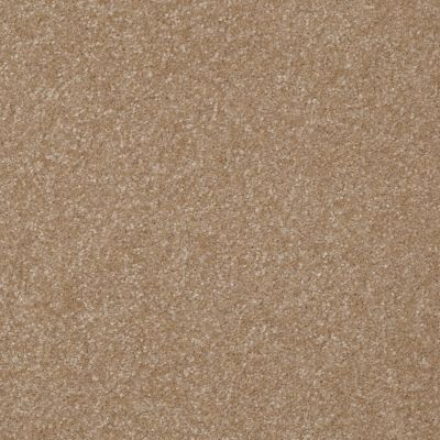 Shaw Floors Roll Special Xv291 I 12′ Sea Grass 00700_XV291