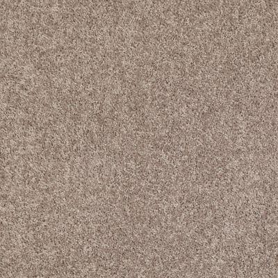 Shaw Floors Roll Special Xv375 Aloe 00300_XV375