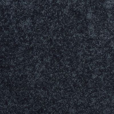 Shaw Floors Roll Special Xv375 Blue Jeans 00420_XV375