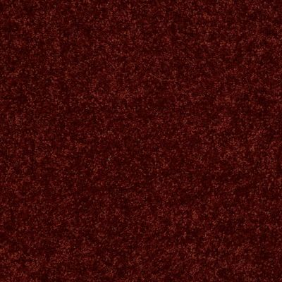 Shaw Floors Roll Special Xv375 Red Rock 00821_XV375