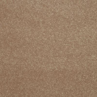 Shaw Floors Roll Special Xv407 Antique Parchment 00102_XV407