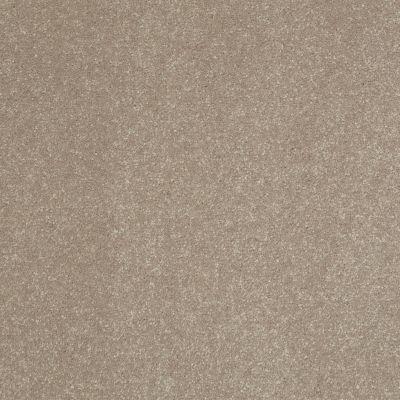 Shaw Floors Roll Special Xv407 Oatmeal 00104_XV407