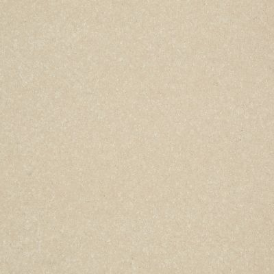 Shaw Floors Roll Special Xv408 Dove Wing 00100_XV408