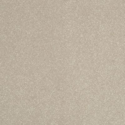 Shaw Floors Roll Special Xv409 Halo 00101_XV409