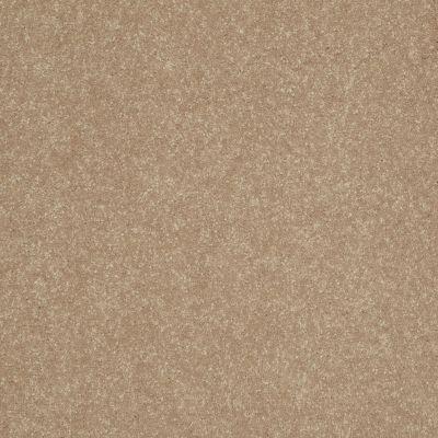 Shaw Floors Roll Special Xv409 Golden Lab 00200_XV409