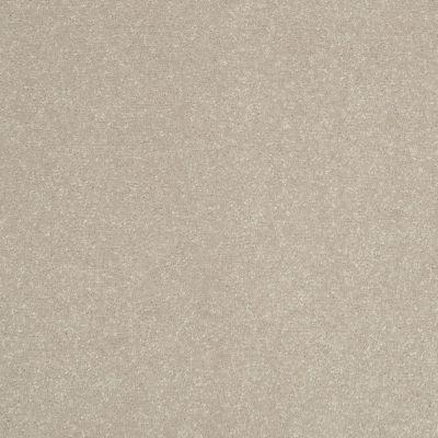 Shaw Floors Roll Special Xv410 Halo 00101_XV410
