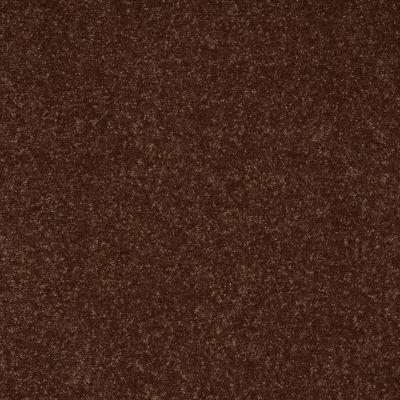 Shaw Floors Roll Special Xv410 Raisin 00709_XV410