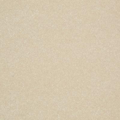 Shaw Floors Roll Special Xv412 Dove Wing 00100_XV412