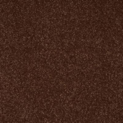 Shaw Floors Roll Special Xv412 Raisin 00709_XV412