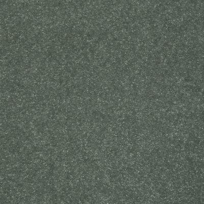 Shaw Floors Roll Special Xv425 Spruce 00311_XV425