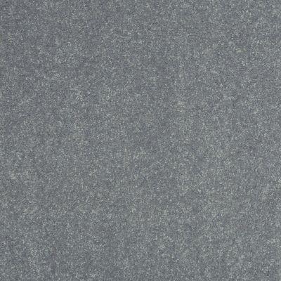 Shaw Floors Roll Special Xv425 Silver Dollar 00500_XV425