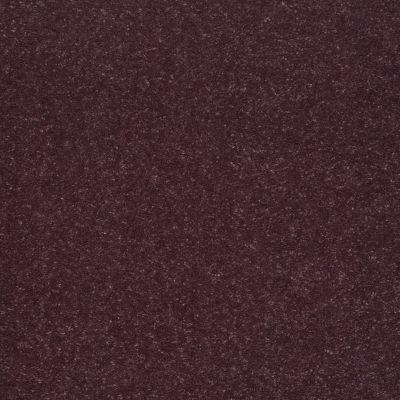 Shaw Floors Roll Special Xv425 Amethyst 00911_XV425