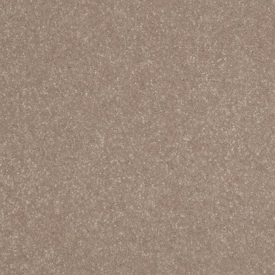 Shaw Floors Roll Special Xv436 Tantalizing Taupe 00103_XV436