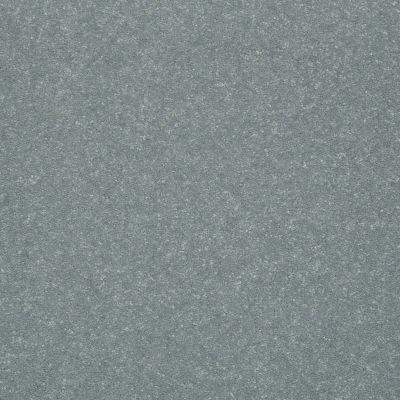 Shaw Floors Roll Special Xv436 Dolphin 00511_XV436