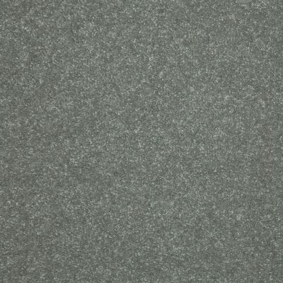 Shaw Floors Roll Special Xv436 Thunder Cloud 00513_XV436