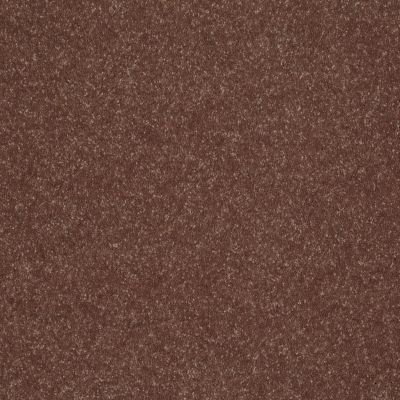 Shaw Floors Roll Special Xv436 Porch Swing 00701_XV436