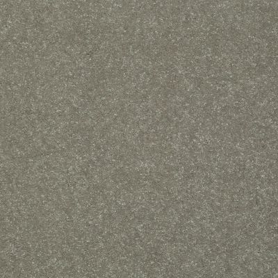Shaw Floors Roll Special Xv436 Mushroom 00710_XV436