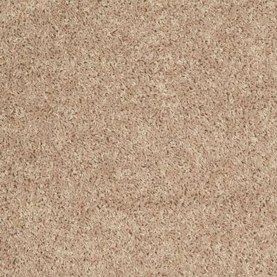 Shaw Floors Roll Special Xv442 Beach Grass 00101_XV442