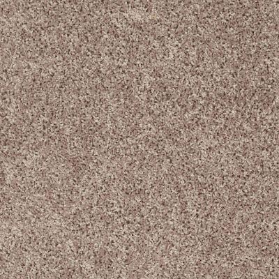 Shaw Floors Roll Special Xv442 Ancient Stone 00700_XV442