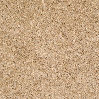 Shaw Floors Roll Special Xv463 Light Aspiration 00101_XV463